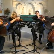 Expert Viola, Violin, Music Theory Tutor in Brighton